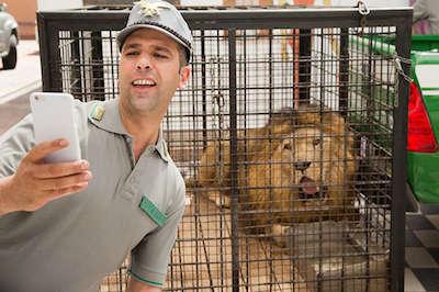 Quo Vado selfie con leone Checco Zalone[1]
