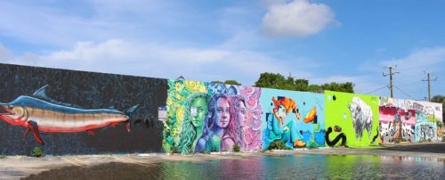 I murales di Wynwood art district. Foto Grigore Scutari