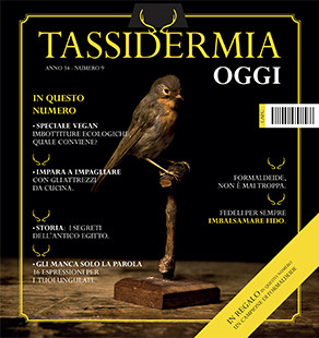 cover-tassidermia-10