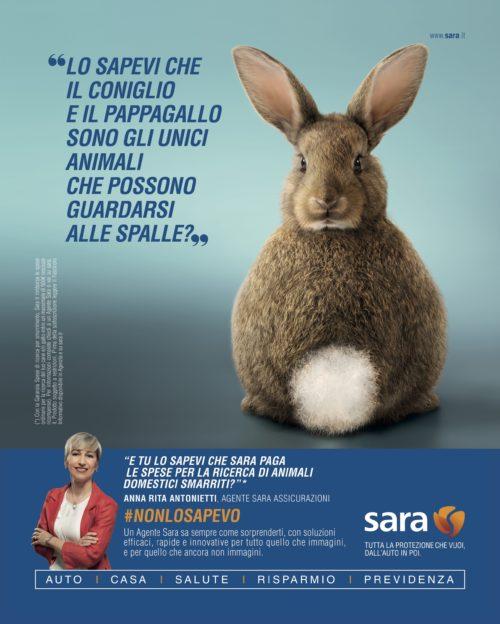 Sara_Coniglio