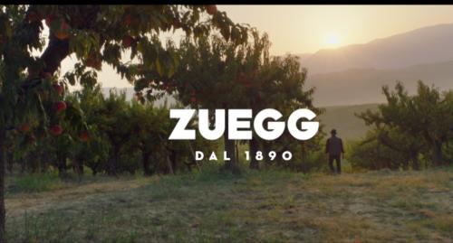 Campagna_TV_ZUEGG