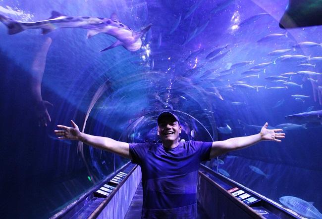Igor Righetti in una delle due gallerie trasparenti dell'Aquarium of the Bay dalle quali si possono osservare squali, mante e altri animali acquatici. Foto Grigore Scutari