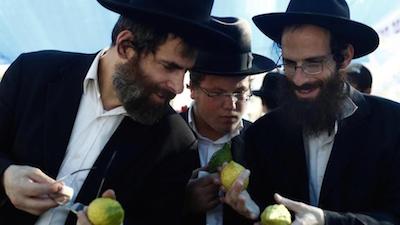 foto rabbini_s.maria del cedro